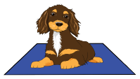Puppy Training for Gundogs (Spaniels) | Jane Ardern's Online Dog Training